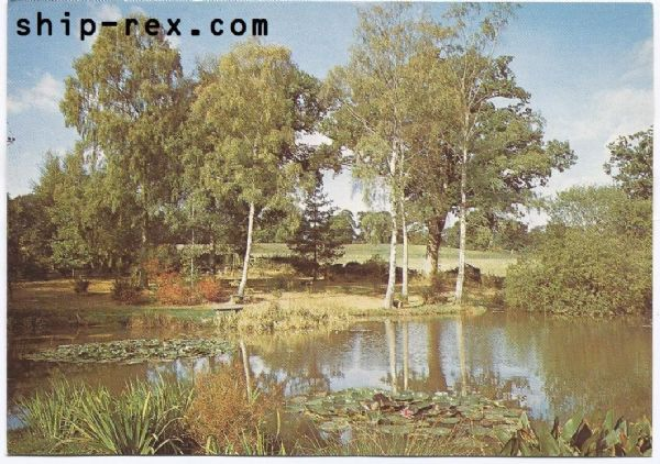 Furzey Gardens, New Forest - Lake and Water Gardens - Dixon postcard